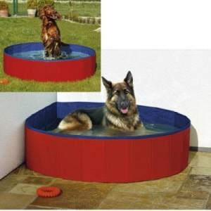 Pileta para perros