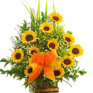 Comprando flores en internet