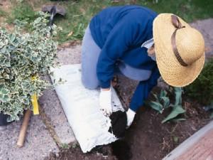 Jardinería para el hogar