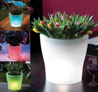Estrategias para plantar geranios en macetas - Macetas con luz ...
