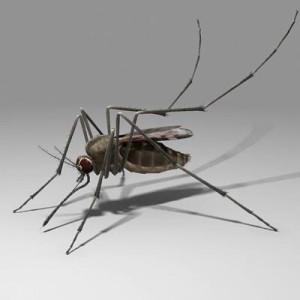 Repeler mosquitos